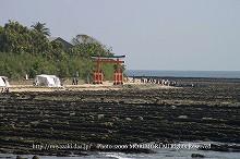 青島 青島神社鳥居