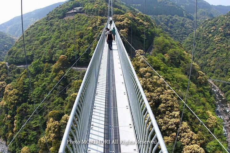 照葉大吊橋(てるは大吊橋) 橋の上から撮影 2012年4月