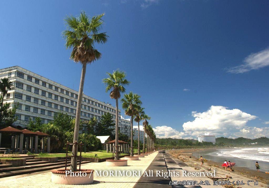 旧青島橘ホテルと青島海岸周辺 青島再開発 旧青島橘ホテルの再開発に和多屋別荘選定(しかし、ブルー