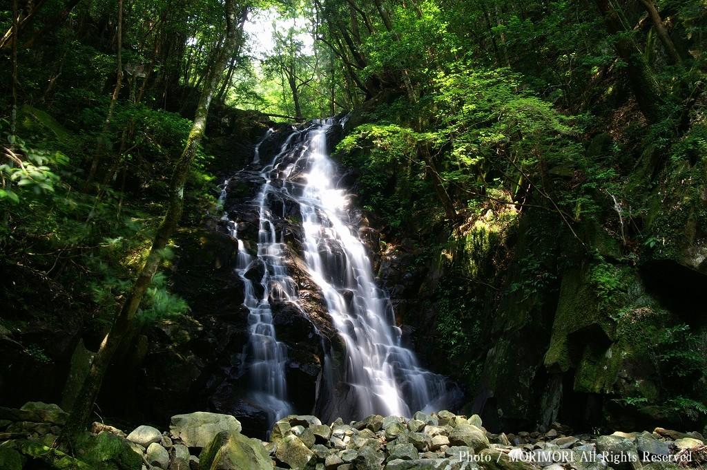 若葉の滝 尾鈴瀑布群 矢研の滝 日本の滝百選 [Photo Miyazaki 宮崎観光写真 TO