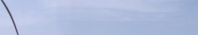 フラワーウエディング−01