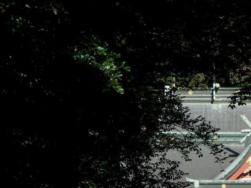霧島神宮拡大写真01−1