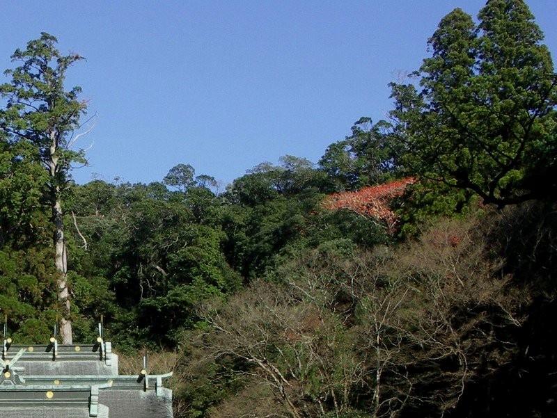 霧島神宮拡大写真02−2