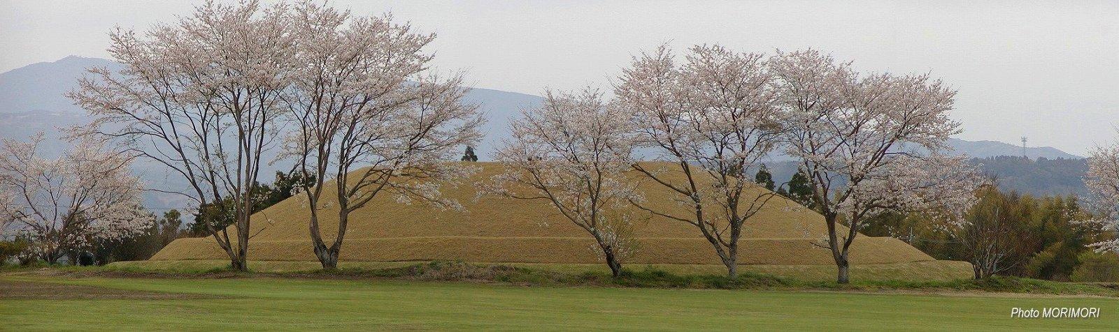 西都原古墳群 169号墳 パノラマ写真