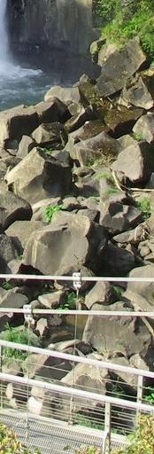 関の尾滝8