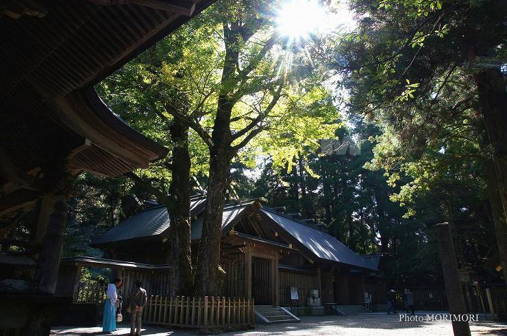 天岩戸神社西本宮拝殿 02